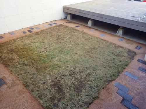 お庭の雑草対策には?!環境にやさしい防草土!!